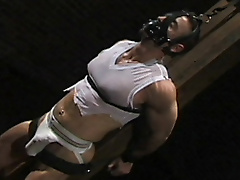 bdsm jock strap play piercing