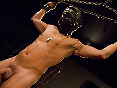 masks restraints dick nipple play paddle beating flogging