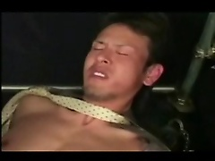 bondage haze slavery slave beaten dungeon bdsm